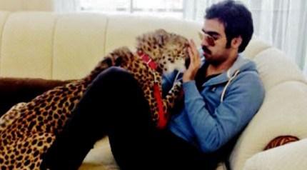 cheetah-and-kuwaiti-man
